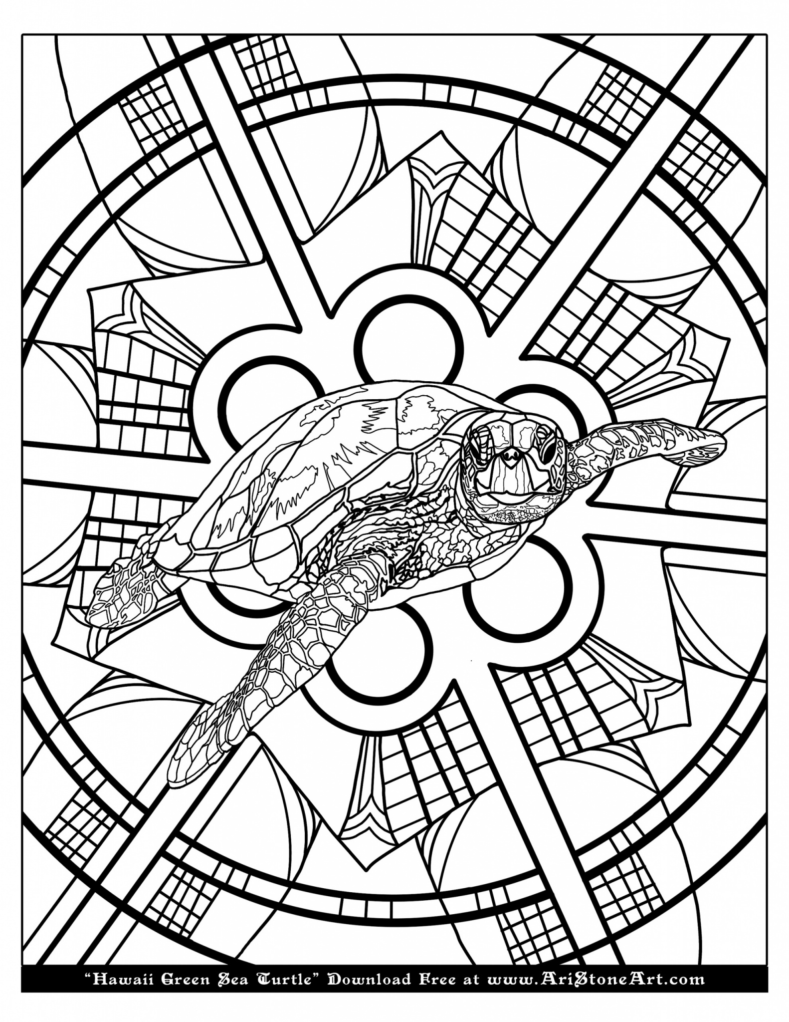 Loggerhead Sea Turtle coloring page | Free Printable Coloring Pages | 2048x1582